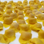cappelletti-1